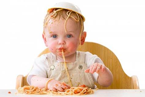 Are your babies 6 months and up? These purees can be their ideal meal!