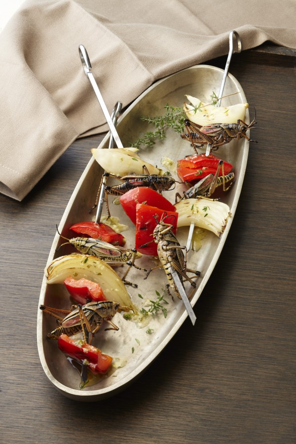 Eat Insects in style
