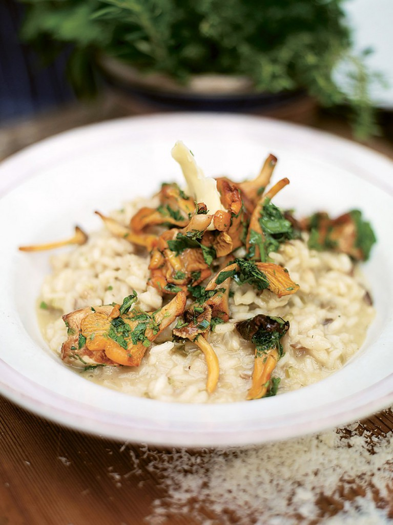 Grilled Mushrooms Risotto